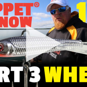 Puppet® Minnow 101 - Where - Part 3